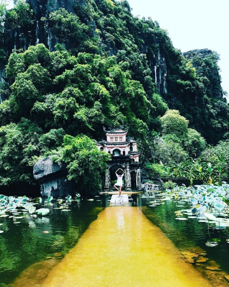 tam coc bich dong vinh ha long tren can