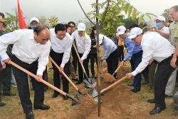 Toyota hưởng ứng Tết trồng cây